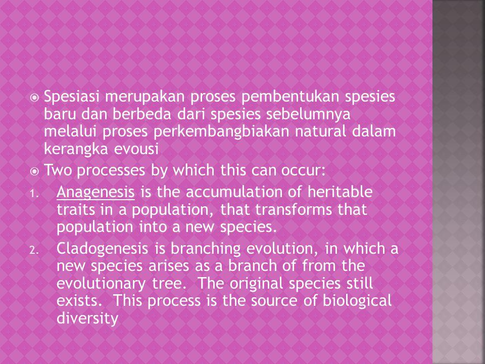  Spesiasi membahas tentang transisi mikroevolusi ke makroevolusi.