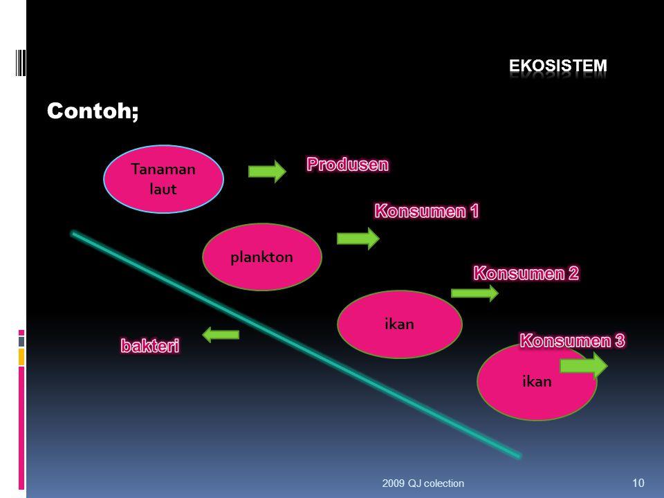 C. Kebergantungan Saling kebergantungan tidak hanya terjadi antar komponen biotik. Saling kebergantungan juga terjadi antara komponen biotik dan abiot