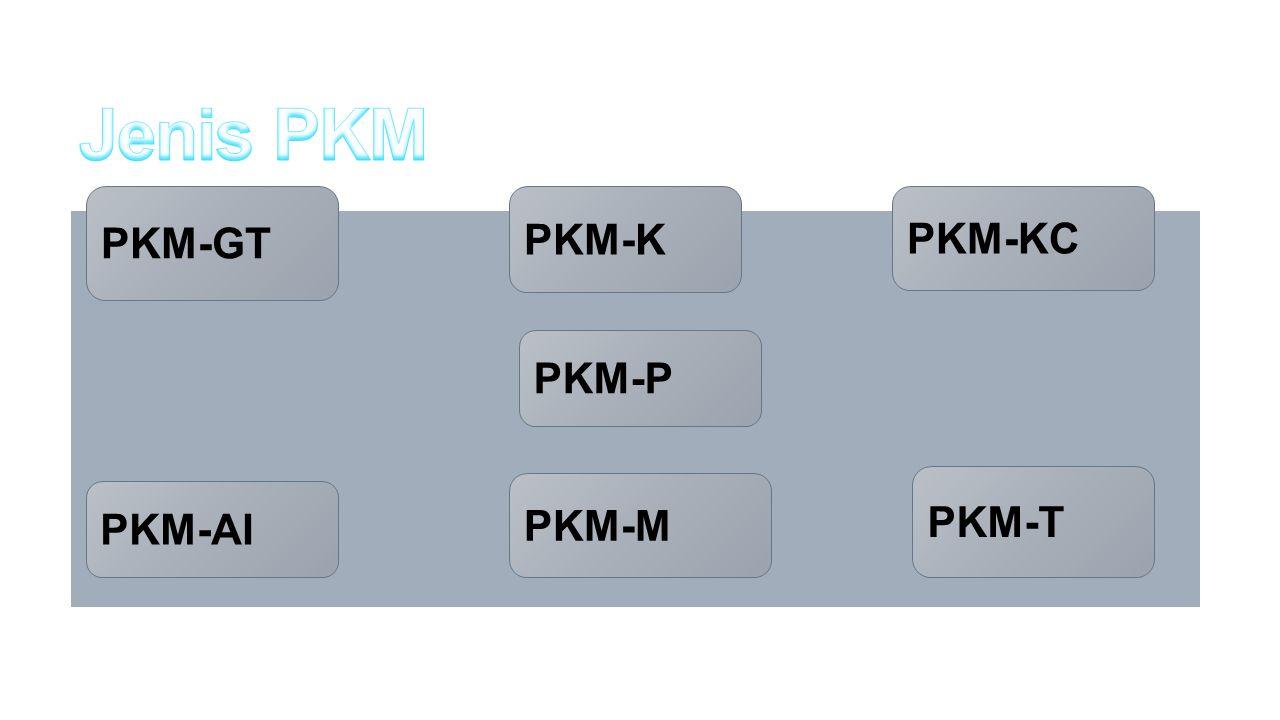 PKM-GT PKM-AI PKM-K PKM-M PKM-KC PKM-T PKM-P
