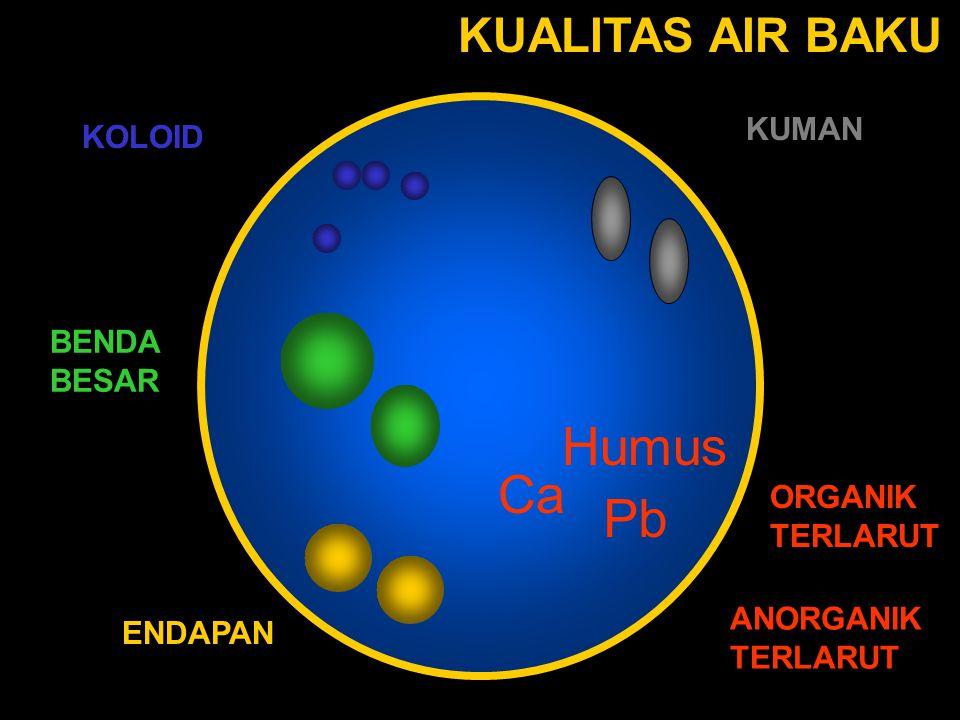 Reaksi hidrolisa Al 3+ + 3H 2 O  Al(OH) 3 + 3H + 1) Jika alkalinitas dalam air cukup, maka terjadi reaksi : •dengan CO 3 2  CO 3 2  + H +  HCO 3  + H 2 O 2) •dengan HCO 3  HCO 3  + H +  CO 2 + H 2 O 3) Reaksi di atas menyebabkan pH air turun.