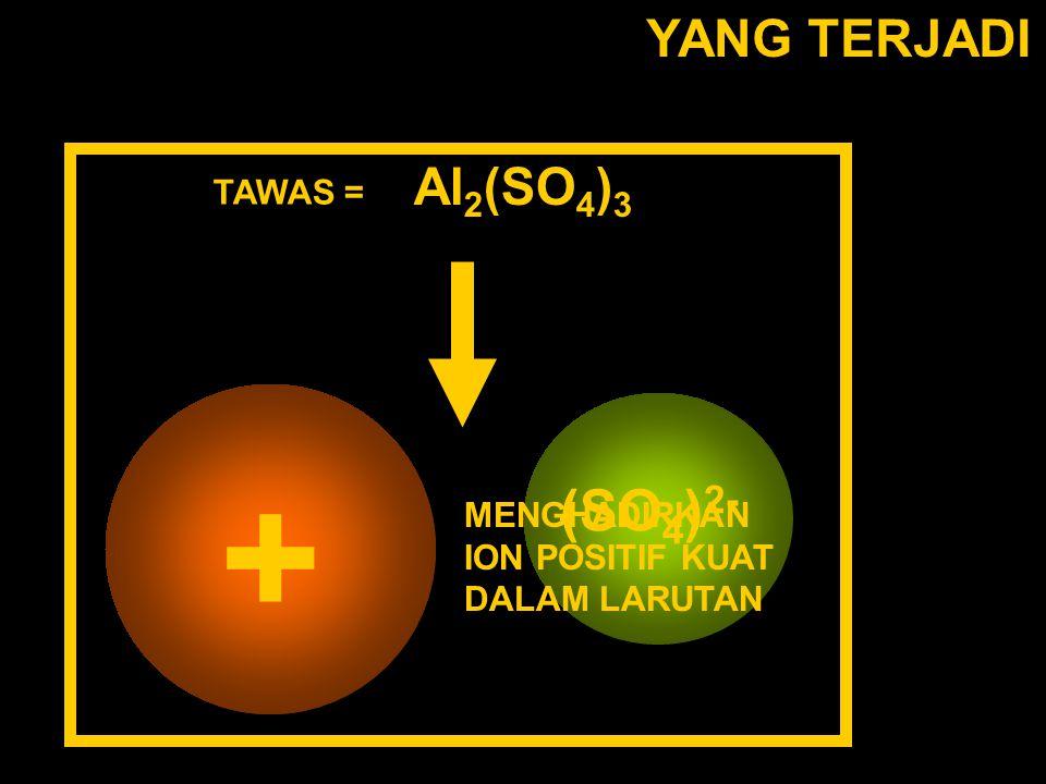 YANG TERJADI TAWAS = Al 2 (SO 4 ) 3 Al(H 2 O 6 ) 3+ (SO 4 ) 2- MENGHADIRKAN ION POSITIF KUAT DALAM LARUTAN +