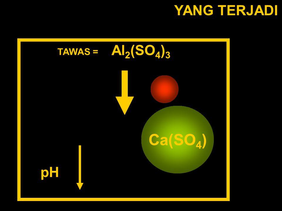YANG TERJADI TAWAS = Al 2 (SO 4 ) 3 Al(H 2 O 6 ) 3+ (SO 4 ) 2- Ca(SO 4 ) pH