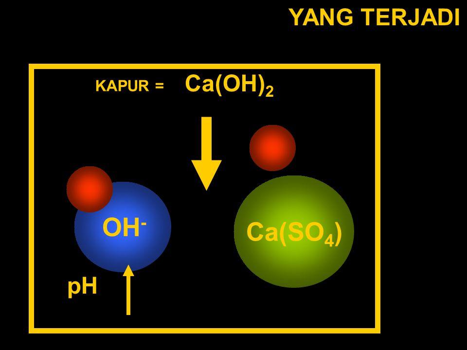 YANG TERJADI Ca(SO 4 ) KAPUR = Ca(OH) 2 pH OH -