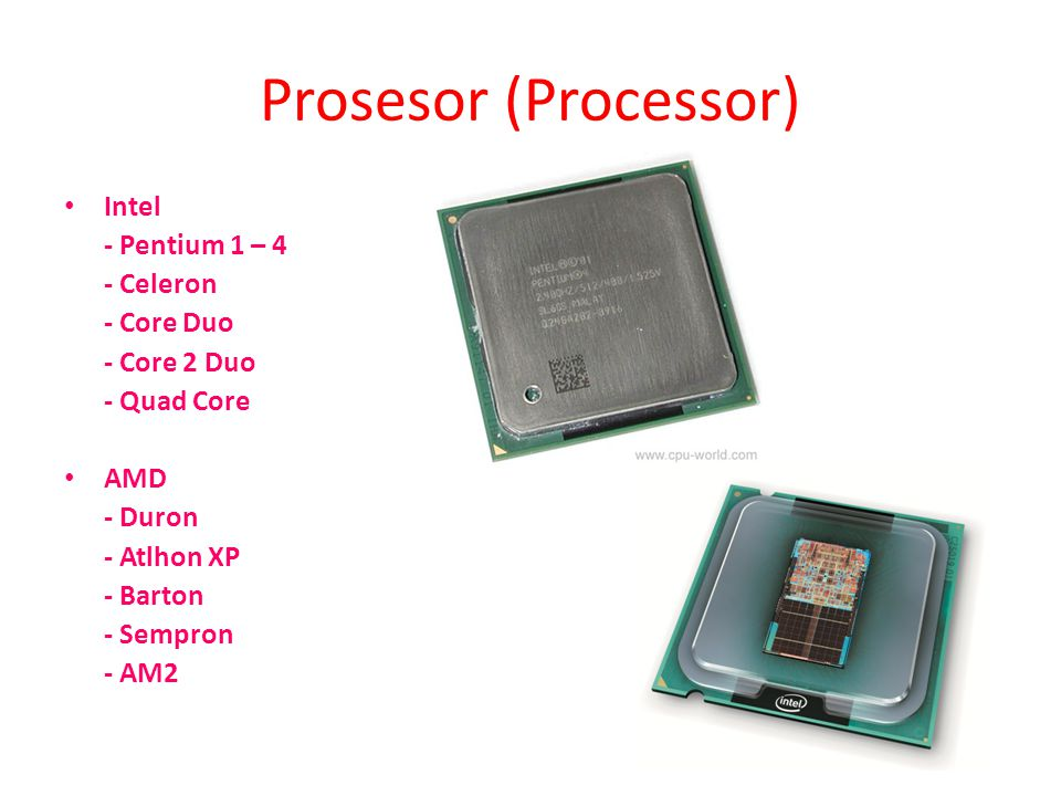 Prosesor (Processor) • Intel - Pentium 1 – 4 - Celeron - Core Duo - Core 2 Duo - Quad Core • AMD - Duron - Atlhon XP - Barton - Sempron - AM2