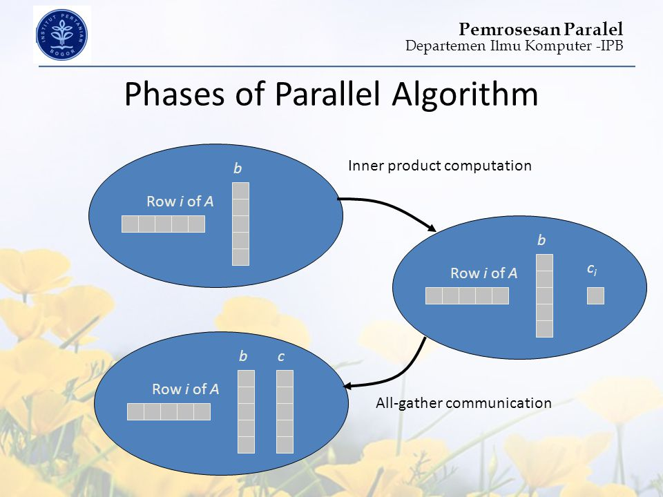 Departemen Ilmu Komputer -IPB Pemrosesan Paralel Phases of Parallel Algorithm Row i of A b b cici Inner product computation Row i of A bc All-gather c