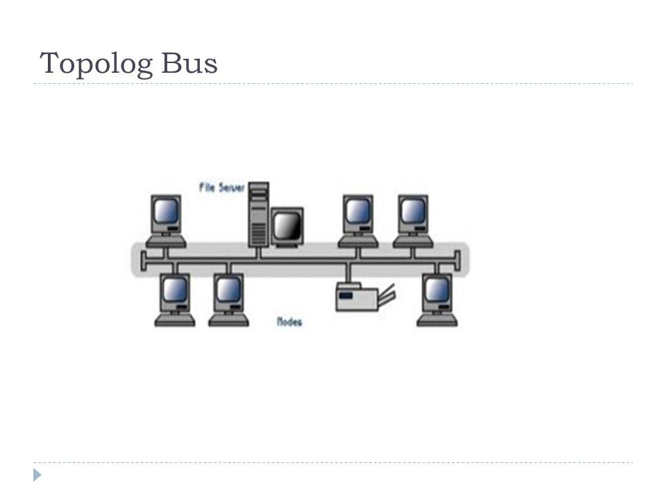 Topolog Bus