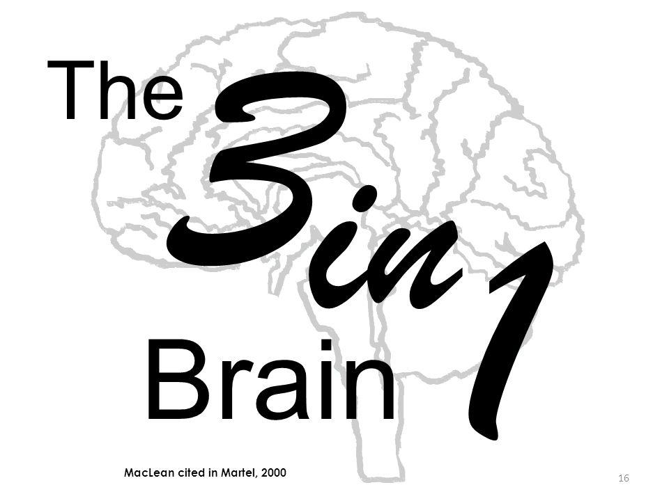 16 The 3 in 1 Brain MacLean cited in Martel, 2000