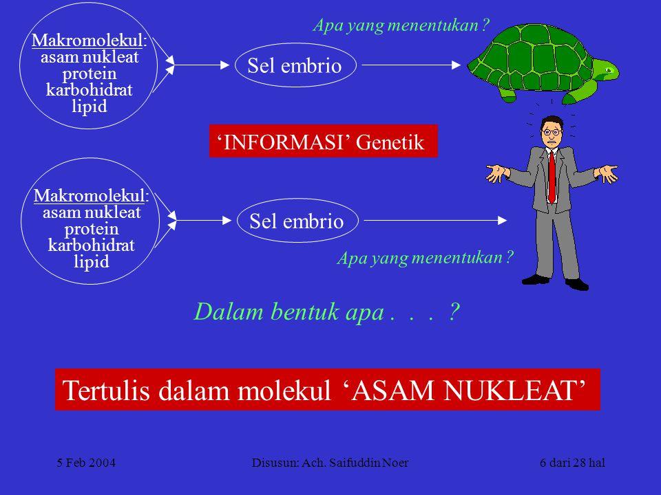 5 Feb 2004Disusun: Ach. Saifuddin Noer6 dari 28 hal Sel embrio Apa yang menentukan .