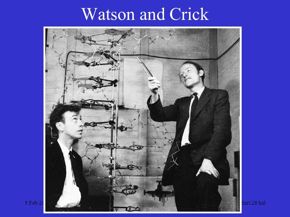5 Feb 2004Disusun: Ach. Saifuddin Noer8 dari 28 hal Watson and Crick