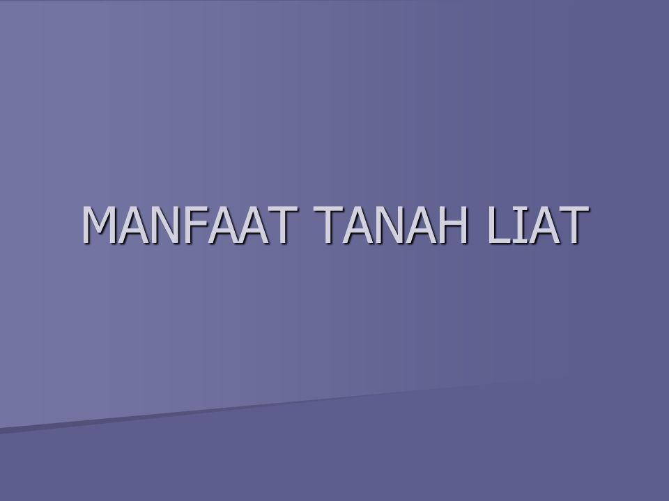 MANFAAT TANAH LIAT