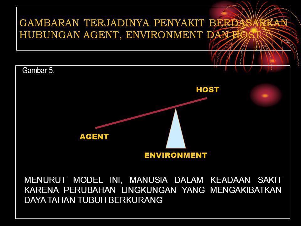 Gambar 4. GAMBARAN TERJADINYA PENYAKIT BERDASARKAN HUBUNGAN AGENT, ENVIRONMENT DAN HOST HOST AGENT ENVIRONMENT MENURUT MODEL INI, MANUSIA DALAM KEADAA