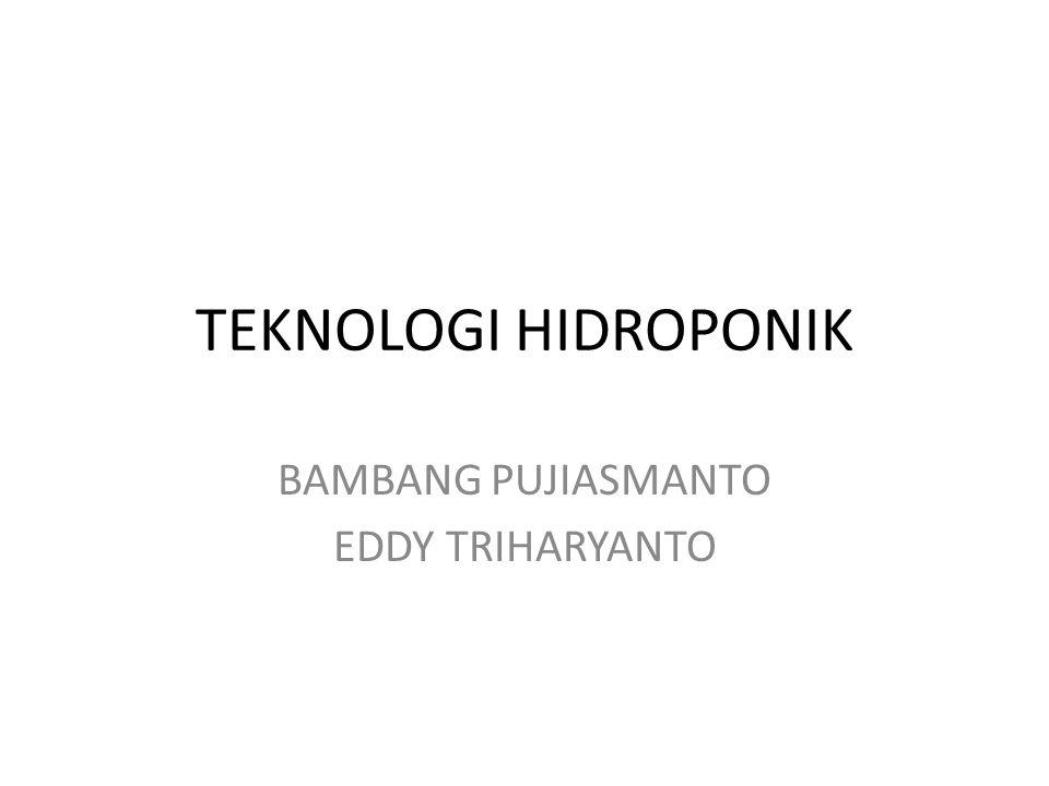 TEKNOLOGI HIDROPONIK BAMBANG PUJIASMANTO EDDY TRIHARYANTO
