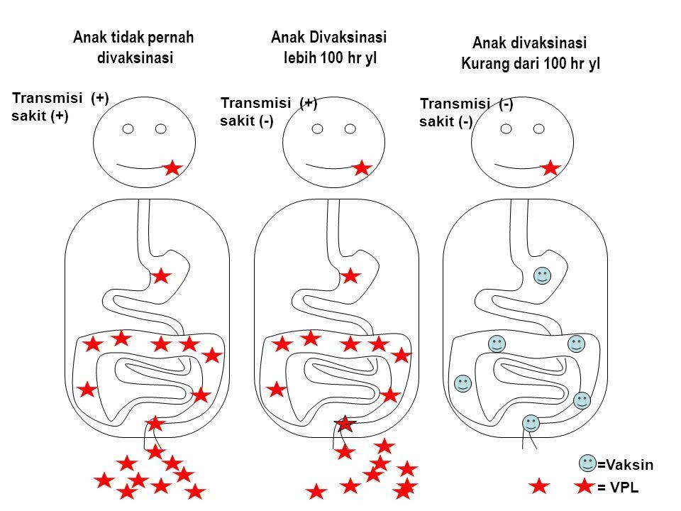 Anak tidak pernah divaksinasi Anak Divaksinasi lebih 100 hr yl Anak divaksinasi Kurang dari 100 hr yl Transmisi (+) sakit (+) Transmisi (+) sakit (-)