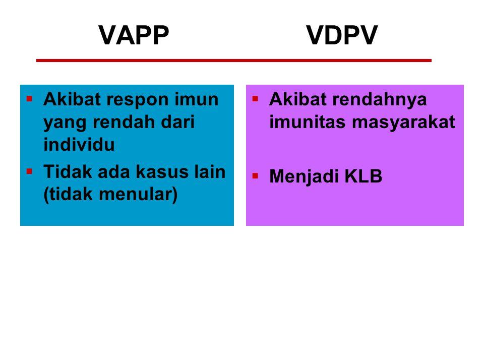 VAPP VDPV  Akibat respon imun yang rendah dari individu  Tidak ada kasus lain (tidak menular)  Akibat rendahnya imunitas masyarakat  Menjadi KLB
