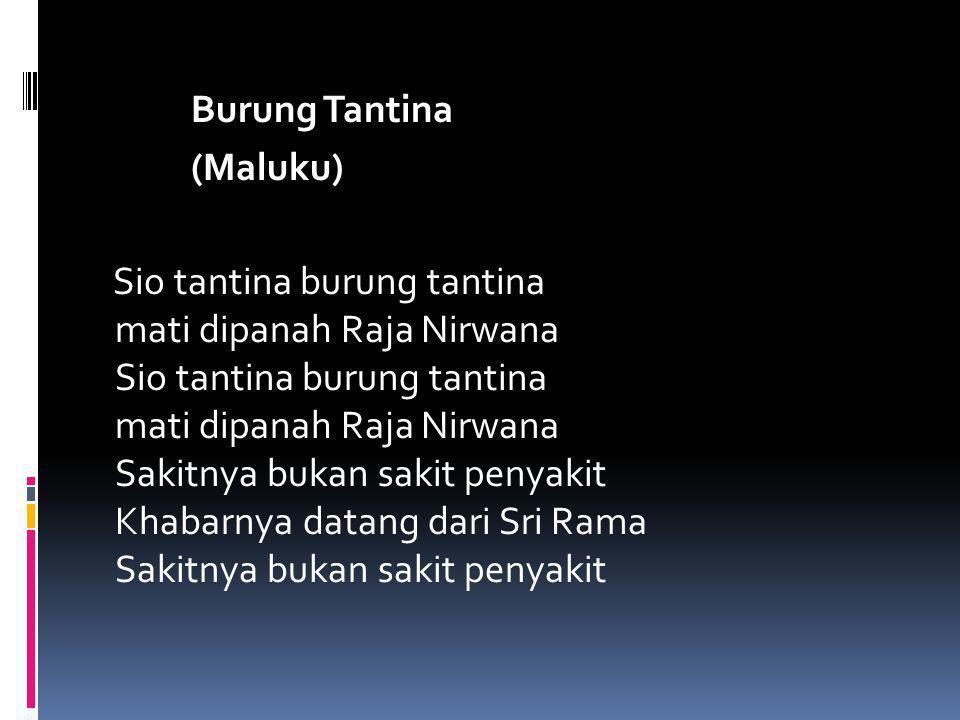 Burung Tantina (Maluku) Sio tantina burung tantina mati dipanah Raja Nirwana Sio tantina burung tantina mati dipanah Raja Nirwana Sakitnya bukan sakit