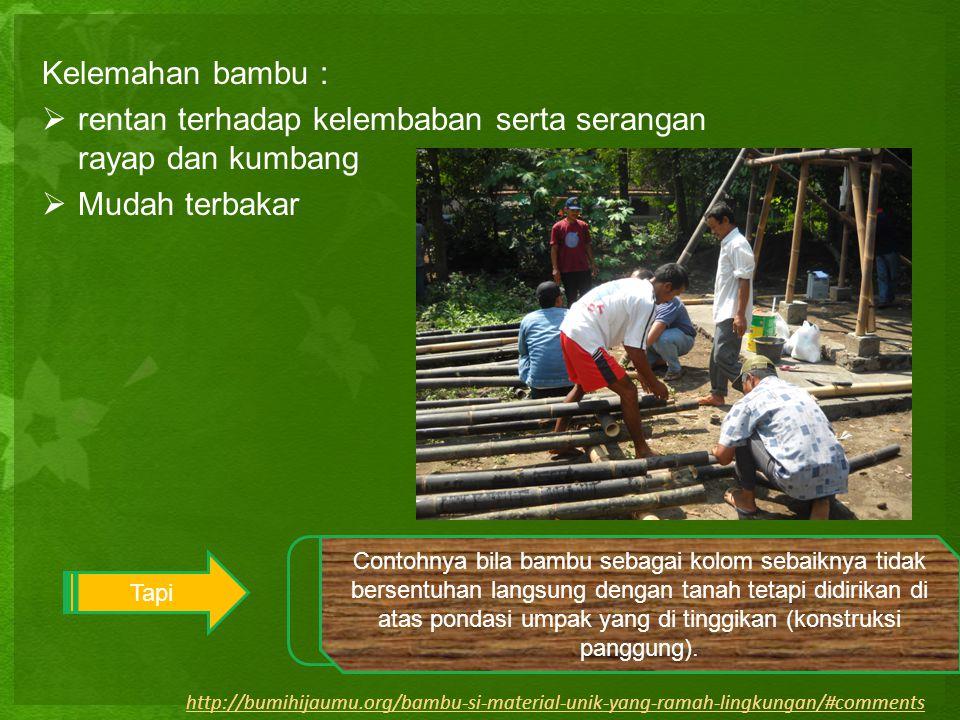 Kelemahan bambu :  rentan terhadap kelembaban serta serangan rayap dan kumbang  Mudah terbakar Tapi 1.dilumuri dengan bensin 2. pengaplikasian bambu