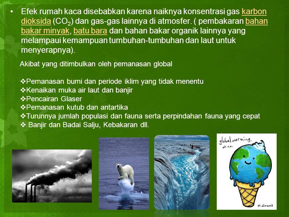 •Efek rumah kaca disebabkan karena naiknya konsentrasi gas karbon dioksida (CO 2 ) dan gas-gas lainnya di atmosfer. ( pembakaran bahan bakar minyak, b