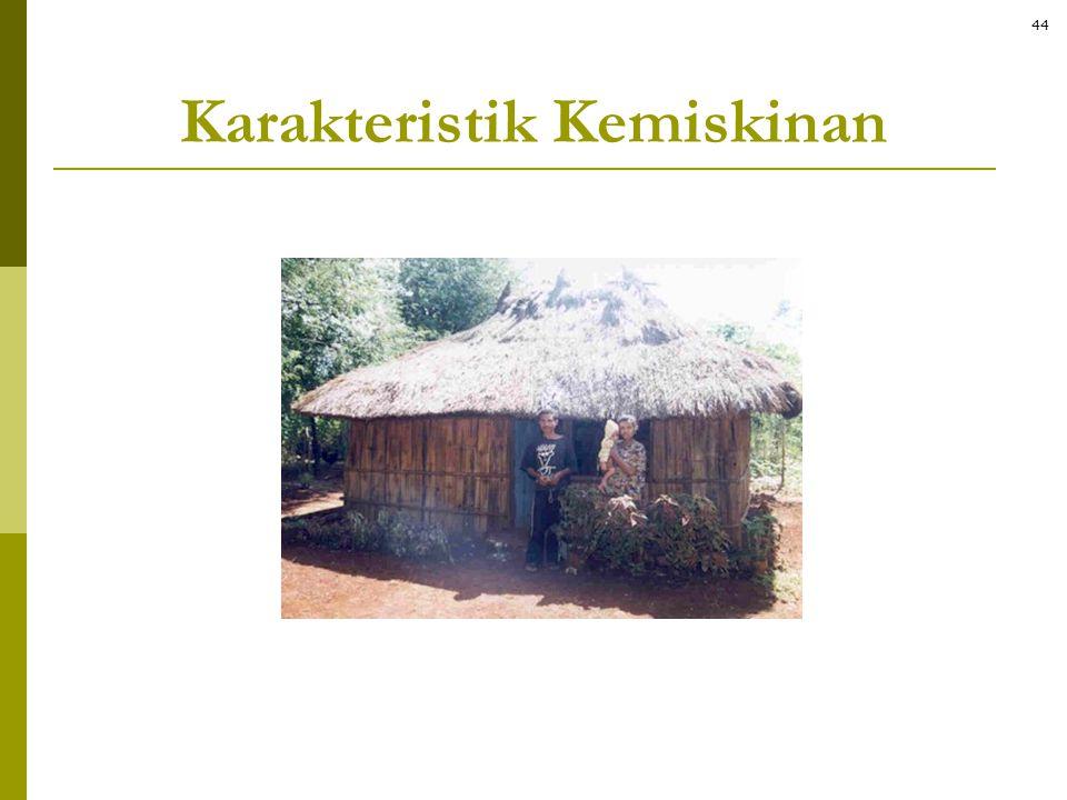 Karakteristik Kemiskinan 44