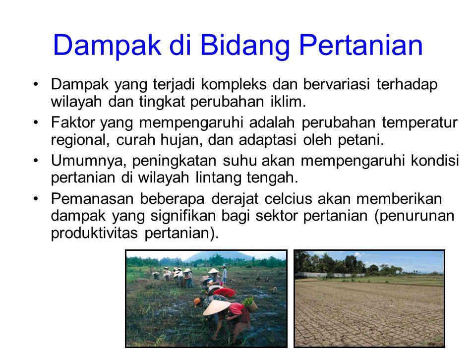 Dampak di Bidang Pertanian •Dampak yang terjadi kompleks dan bervariasi terhadap wilayah dan tingkat perubahan iklim. •Faktor yang mempengaruhi adalah