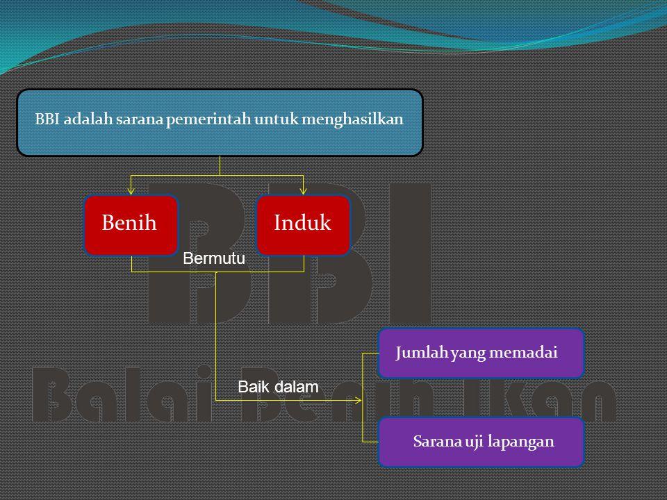 B. Pengelolaan Kolam 1. Pengelolaan tanah dasar kolam 2. Pemupukan dan pengapuran 3. Pengaturan air