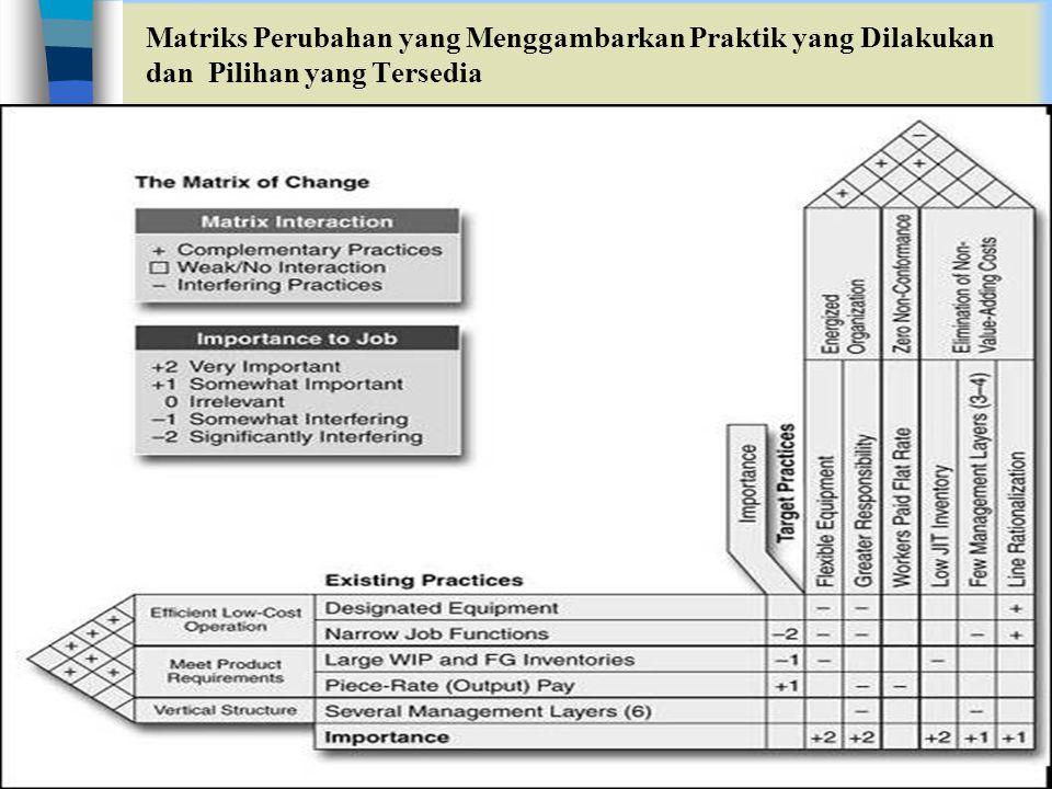 Matriks Perubahan yang Menggambarkan Praktik yang Dilakukan dan Pilihan yang Tersedia