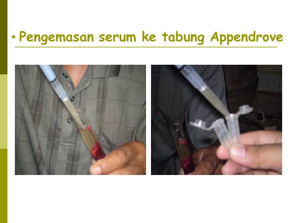 • Pengemasan serum ke tabung Appendrove