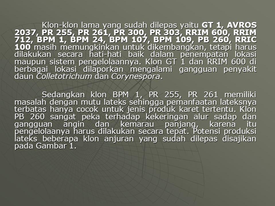 Klon-klon lama yang sudah dilepas yaitu GT 1, AVROS 2037, PR 255, PR 261, PR 300, PR 303, RRIM 600, RRIM 712, BPM 1, BPM 24, BPM 107, BPM 109, PB 260,