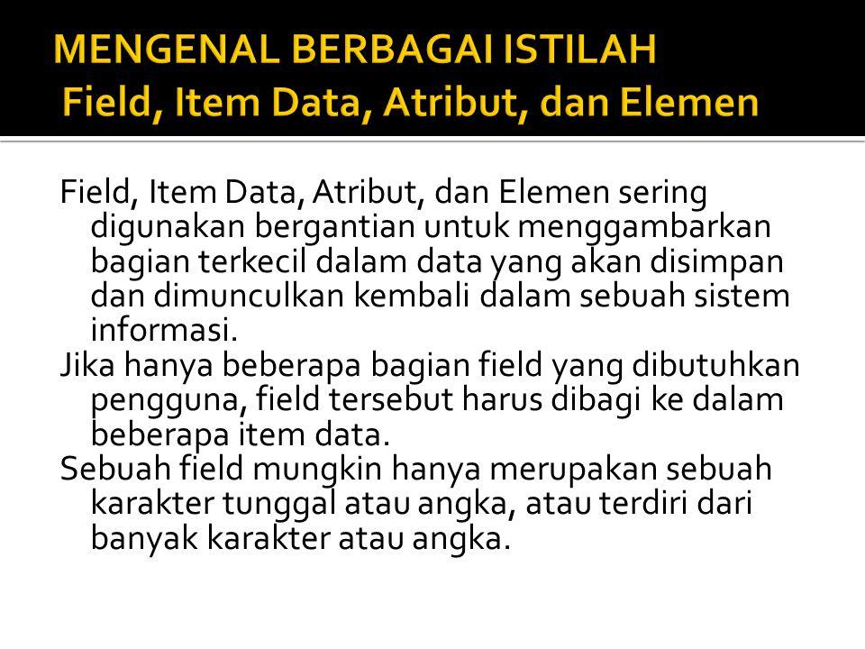  Nama pelanggan  Nomor jaminan sosial karyawan  Nomor pesanan penjualan  Nomor rekening pelanggan Sebuah field biasanya secara logika diasosiasikan dengan field lainnya, sebuah pengelompokkan logis field disebut record.