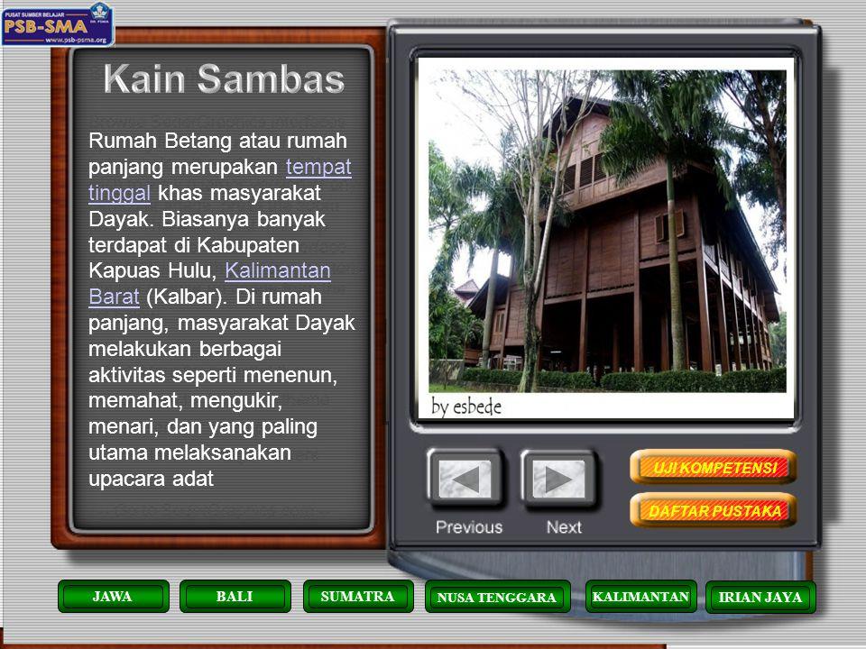 Kain Tenun Sambas merupakan kain kebanggaan Orang Sambas. Kain Sambas biasanya dipakai pada majlis- majlis perkawinan, musyawarah, menghadiri undangan