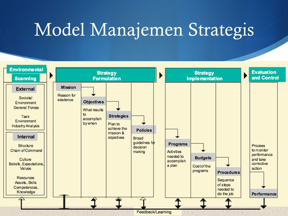 STRATEGIES Business Strategy  Competitive strategies  Cooperative strategies