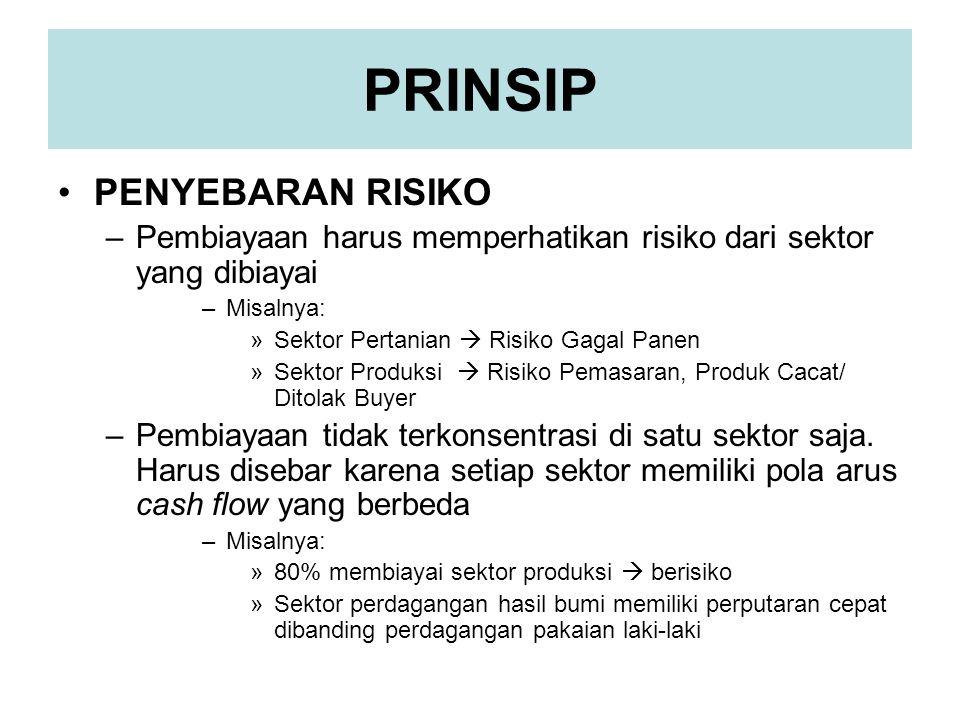 PRINSIP •PENYEBARAN RISIKO –Pembiayaan harus memperhatikan risiko dari sektor yang dibiayai –Misalnya: »Sektor Pertanian  Risiko Gagal Panen »Sektor