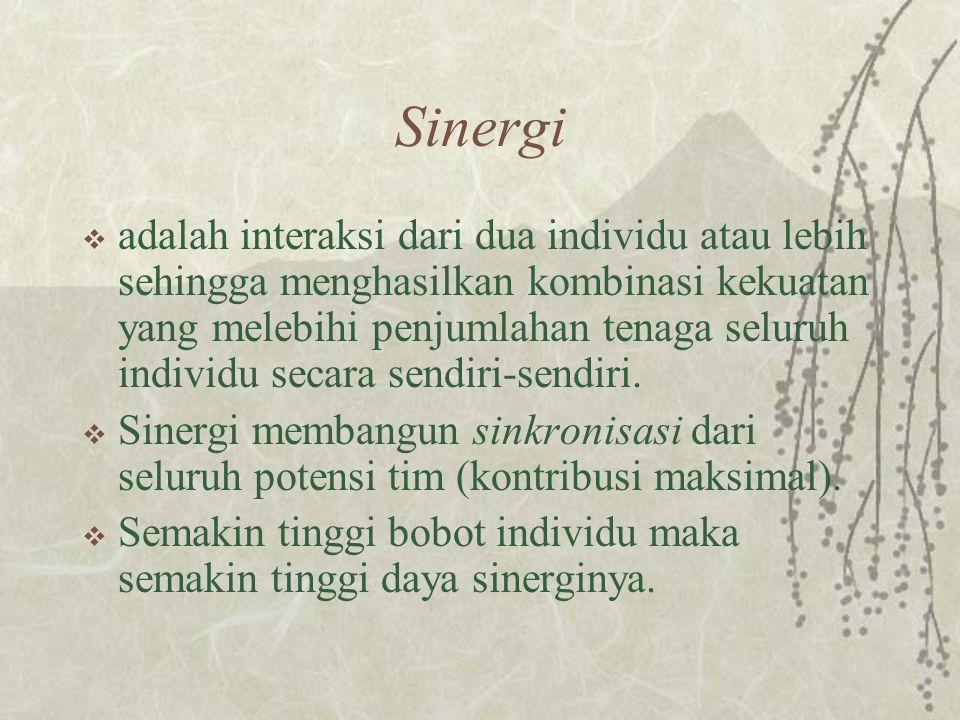 Sinergi  adalah interaksi dari dua individu atau lebih sehingga menghasilkan kombinasi kekuatan yang melebihi penjumlahan tenaga seluruh individu secara sendiri-sendiri.