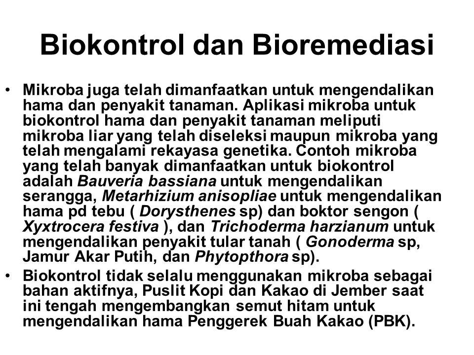 Biokontrol dan Bioremediasi •Mikroba juga telah dimanfaatkan untuk mengendalikan hama dan penyakit tanaman. Aplikasi mikroba untuk biokontrol hama dan