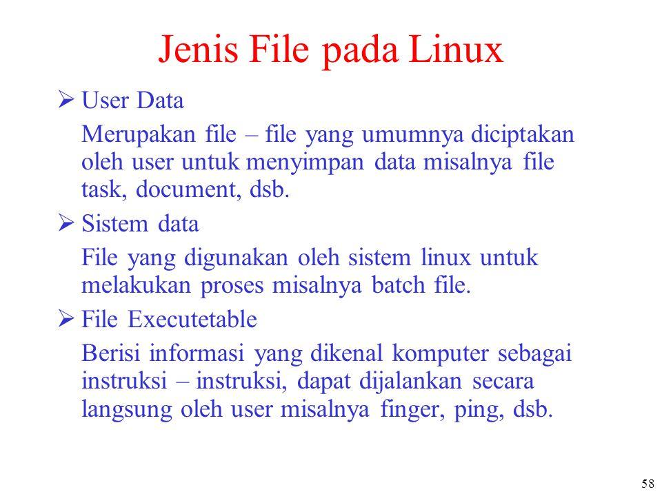58 Jenis File pada Linux  User Data Merupakan file – file yang umumnya diciptakan oleh user untuk menyimpan data misalnya file task, document, dsb. 