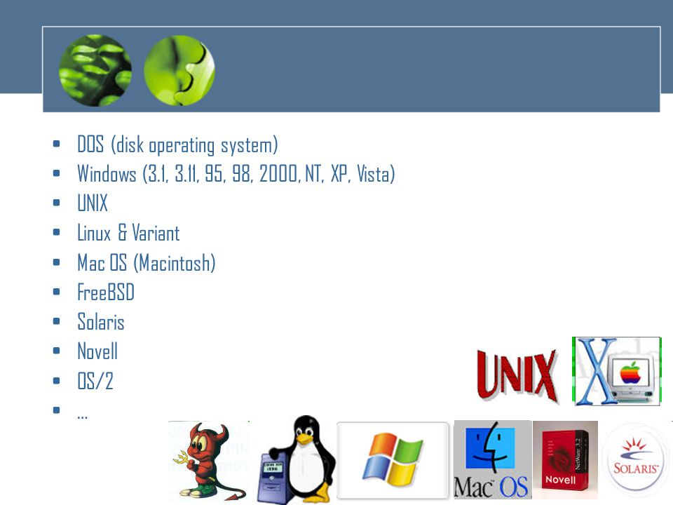 6 •DOS (disk operating system) •Windows (3.1, 3.11, 95, 98, 2000, NT, XP, Vista) •UNIX •Linux & Variant •Mac OS (Macintosh) •FreeBSD •Solaris •Novell •OS/2 •…