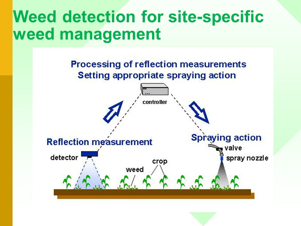 01/07/2014 Dies Natalis IPB 2001 33 Weed detection for site-specific weed management