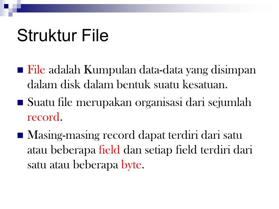 Struktur File  File adalah Kumpulan data-data yang disimpan dalam disk dalam bentuk suatu kesatuan.  Suatu file merupakan organisasi dari sejumlah r