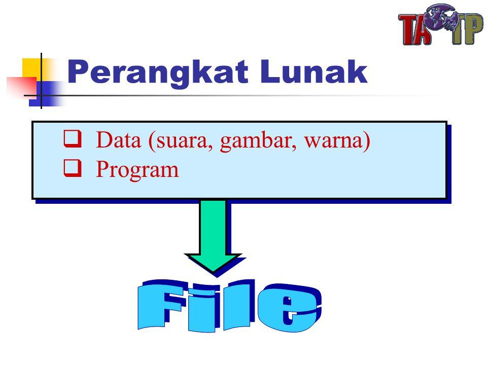Perangkat Lunak  Data (suara, gambar, warna)  Program  Data (suara, gambar, warna)  Program