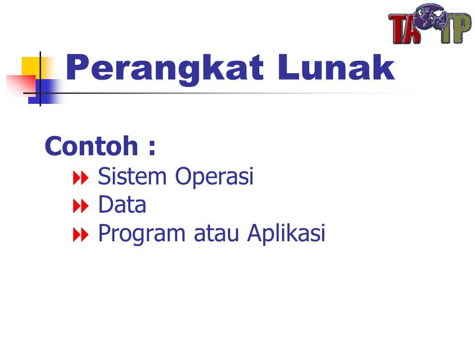 Perangkat Lunak Contoh :  Sistem Operasi  Data  Program atau Aplikasi