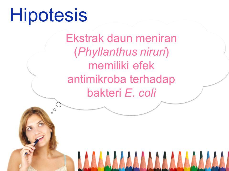 Hipotesis Ekstrak daun meniran (Phyllanthus niruri) memiliki efek antimikroba terhadap bakteri E. coli