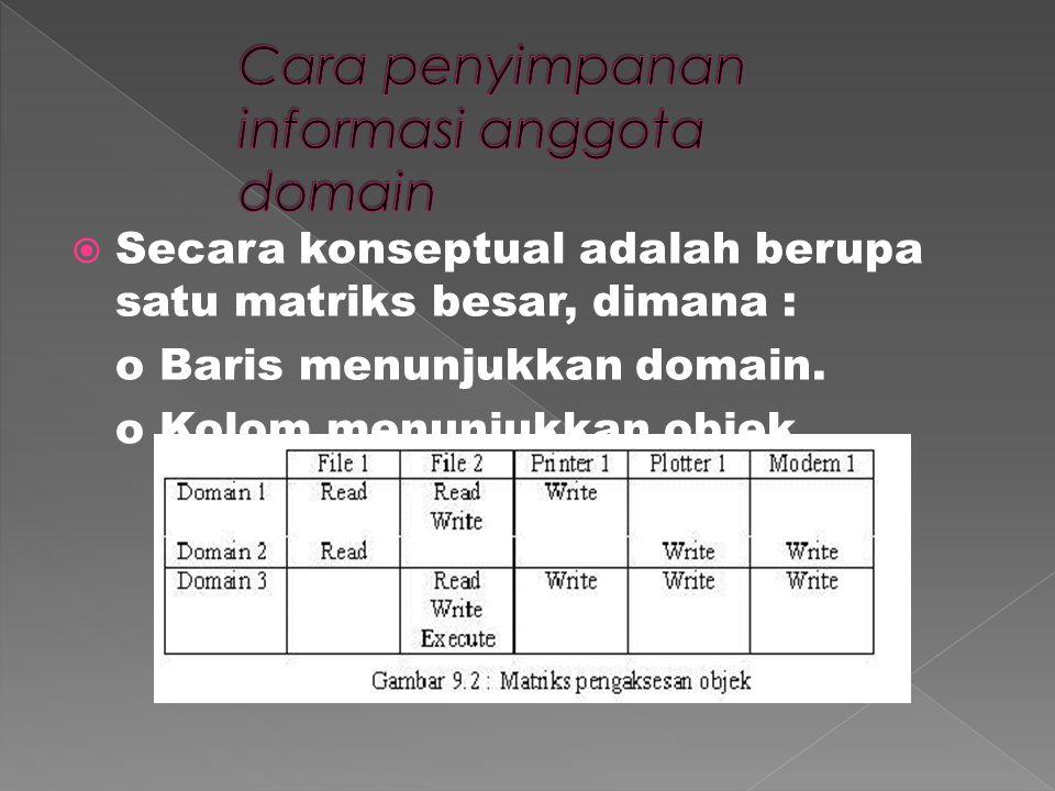  Secara konseptual adalah berupa satu matriks besar, dimana : o Baris menunjukkan domain.