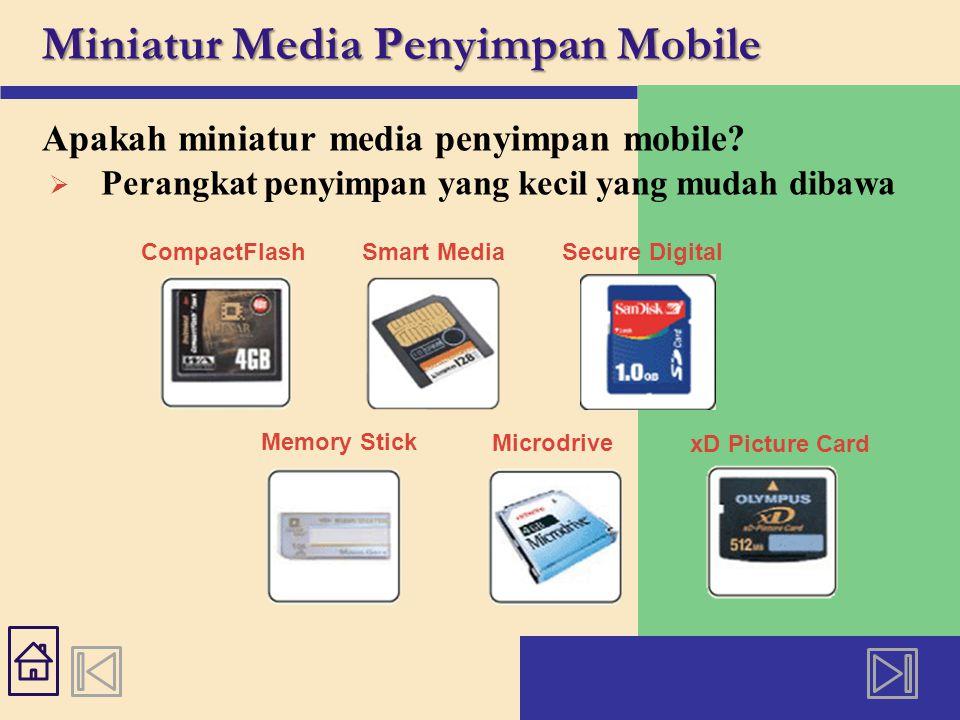 Miniatur Media Penyimpan Mobile Apakah miniatur media penyimpan mobile.