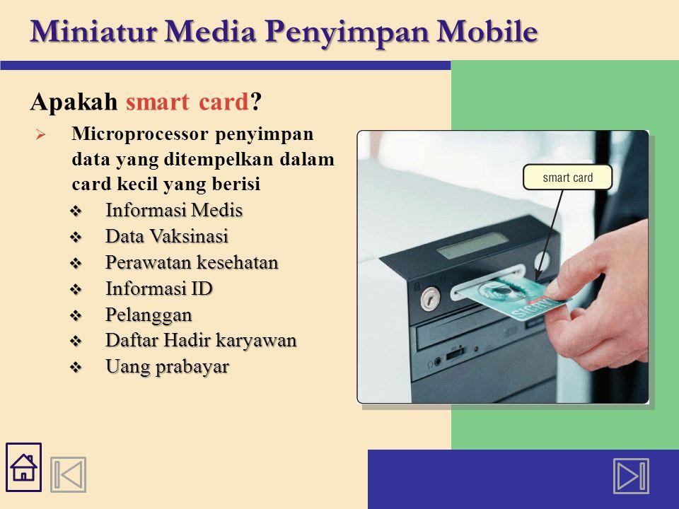 Miniatur Media Penyimpan Mobile Apakah smart card.