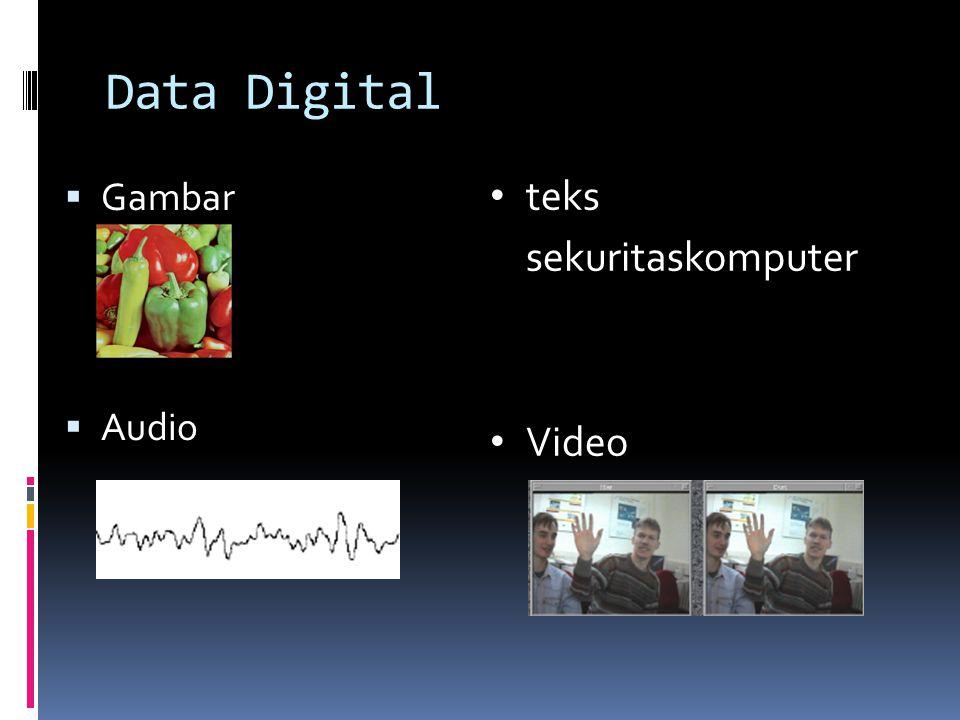 Data Digital  Gambar  Audio • teks sekuritaskomputer • Video