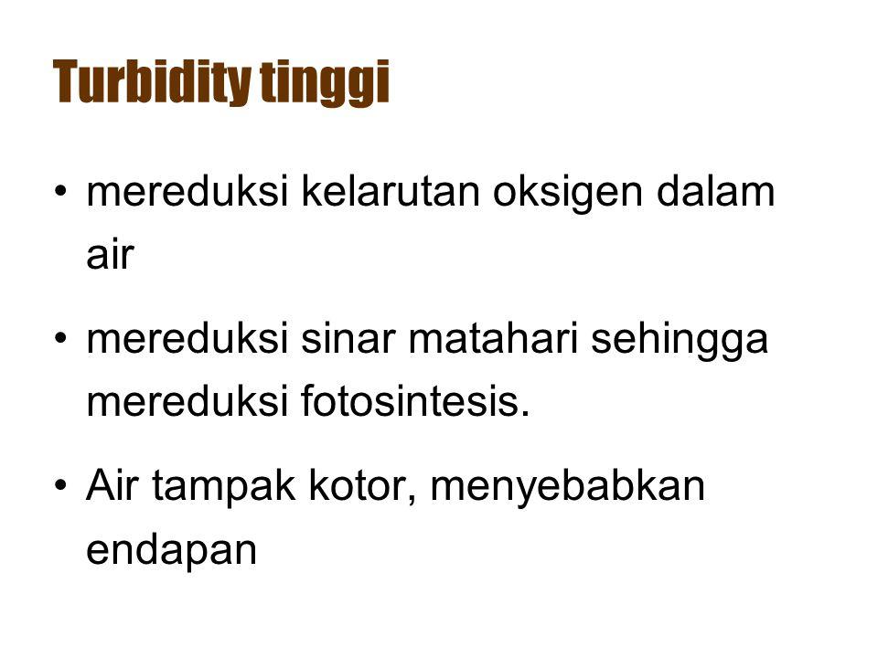 Turbidity tinggi •mereduksi kelarutan oksigen dalam air •mereduksi sinar matahari sehingga mereduksi fotosintesis. •Air tampak kotor, menyebabkan enda