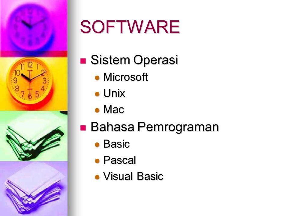SOFTWARE  Program Aplikasi  Microsoft Office  CorelDraw  Dreamweaver  Winamp  Program Bantu  Norton Antivirus  Winrar  Disk Optimazer