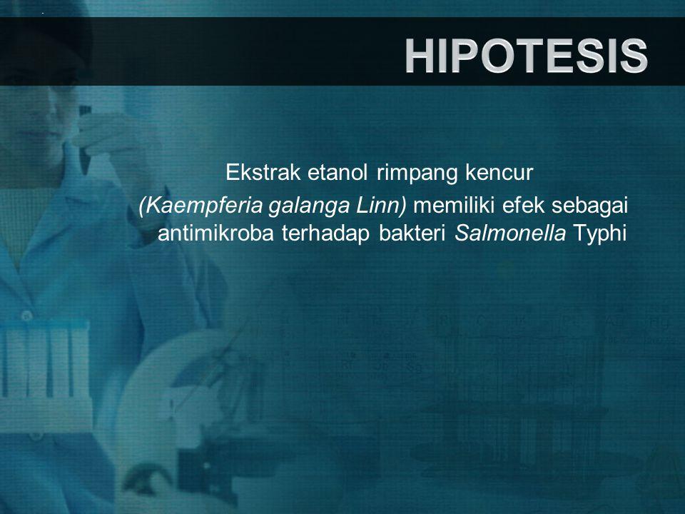 Ekstrak etanol rimpang kencur (Kaempferia galanga Linn) memiliki efek sebagai antimikroba terhadap bakteri Salmonella Typhi.