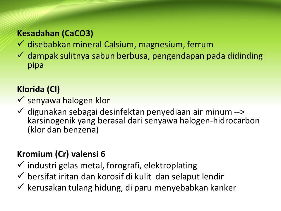Kesadahan (CaCO3)  disebabkan mineral Calsium, magnesium, ferrum  dampak sulitnya sabun berbusa, pengendapan pada didinding pipa Klorida (Cl)  seny