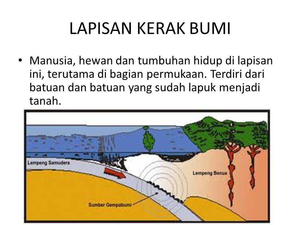 LAPISAN KERAK BUMI • Manusia, hewan dan tumbuhan hidup di lapisan ini, terutama di bagian permukaan. Terdiri dari batuan dan batuan yang sudah lapuk m