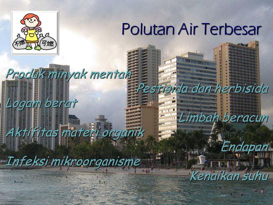 Polutan Air Terbesar Produk minyak mentah Pestisida dan herbisida Logam berat Limbah beracun Aktifitas materi organik Endapan Infeksi mikroorganisme Kenaikan suhu
